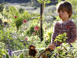 The Garden Art